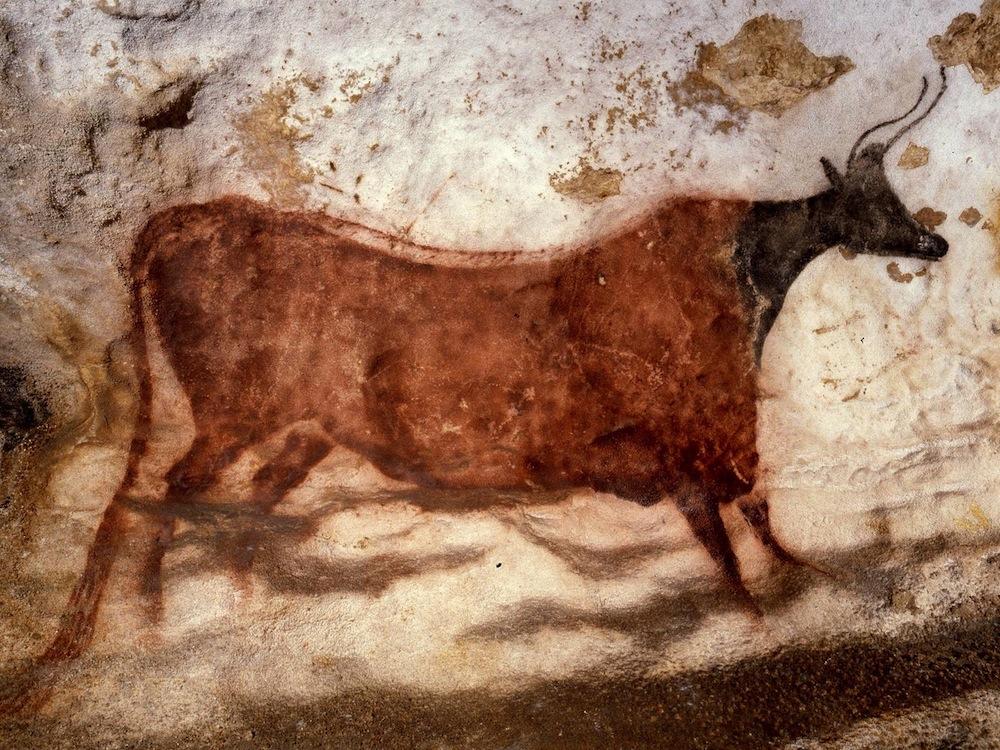 Vache ocre rouge