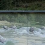 Les flots, fragment de la peinture murale (58 m de long). Bagnac-sur-Célé.