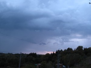 L'oeil gauche, bien visible se détache dans la bande sombre de nuage qui coupe horizontalement l'image. Le museau pointe vers le bas, nuage bas du centre de la photo.
