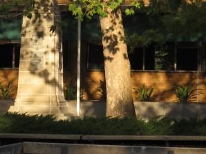 À gauche du tronc d'arbre, visage grave qui observe