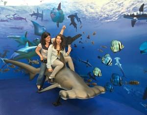 Juchées sur un requin-marteau